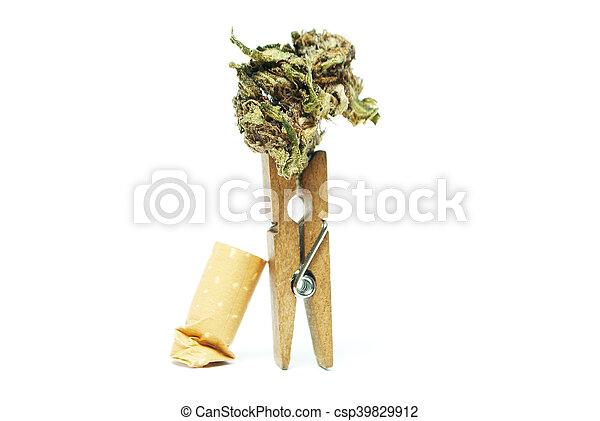 marijuana - csp39829912