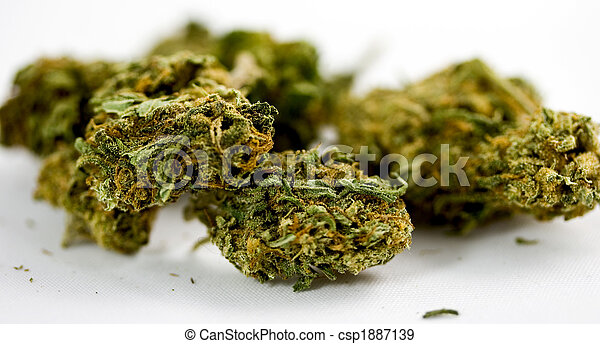 marijuana - csp1887139