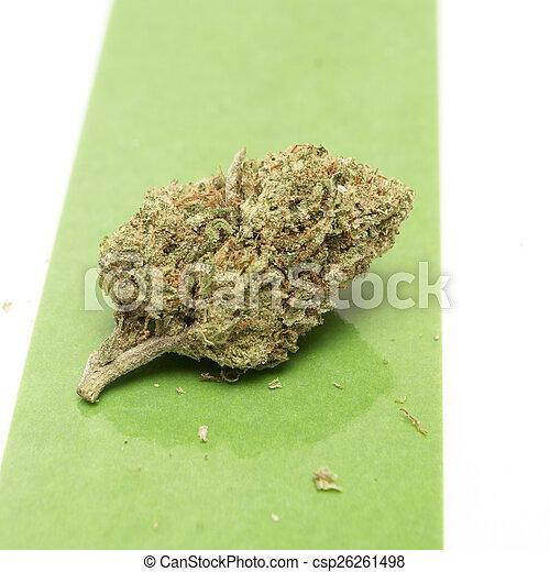 marijuana - csp26261498