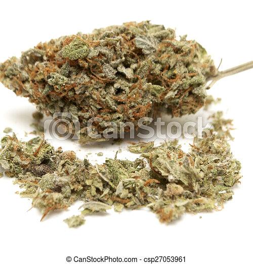 Marihuana - csp27053961