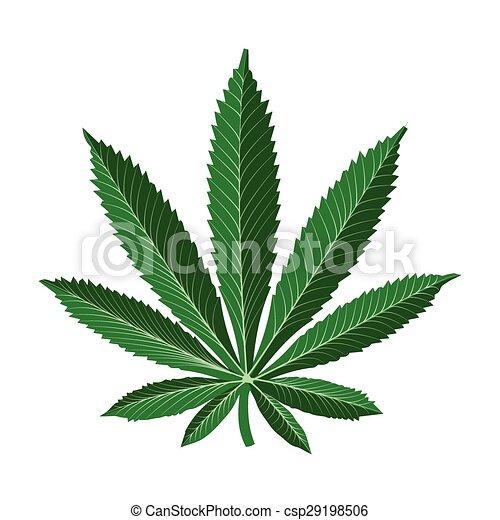 Marijuana leaf - csp29198506