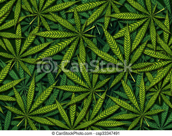 Marijuana Leaves Background Marijuana Leaves Background Pattern As