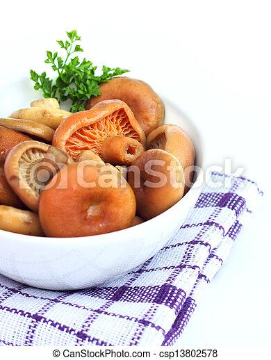 Marinated saffron milk cap mushrooms - csp13802578