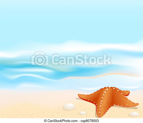 Marine landscape with a sea star (starfish), beach, sea and rocks - csp8078003