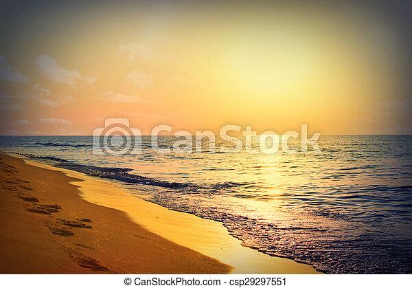 Marine sunrise - csp29297551