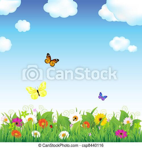 mariposas, flor, pradera - csp8440116