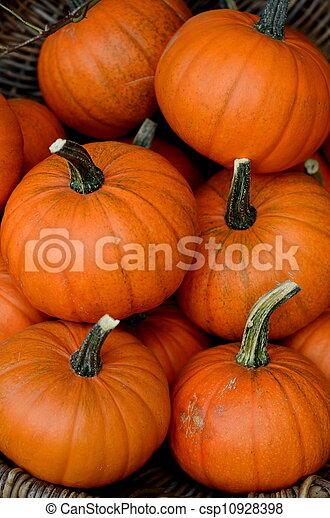 Market Pumpkins - csp10928398
