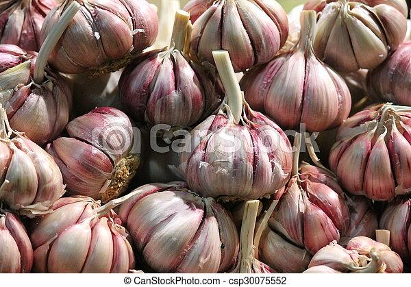market whole garlic bulbs - csp30075552