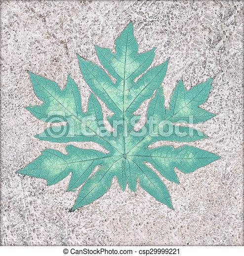 Marks of leaf on the concrete pavement. - csp29999221
