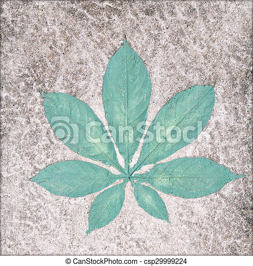 Marks of leaf on the concrete pavement. - csp29999224