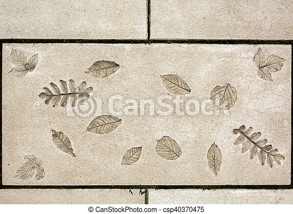 marks of leaf on the concrete - csp40370475