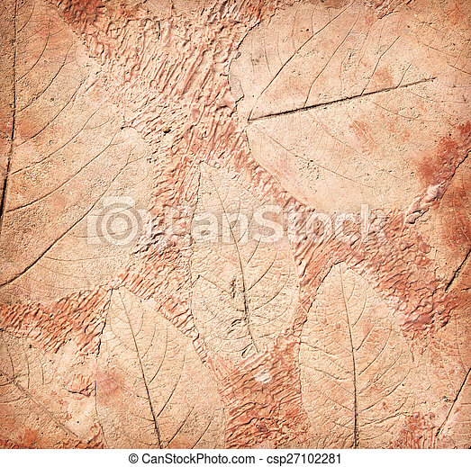 marks of leaf on the concrete - csp27102281