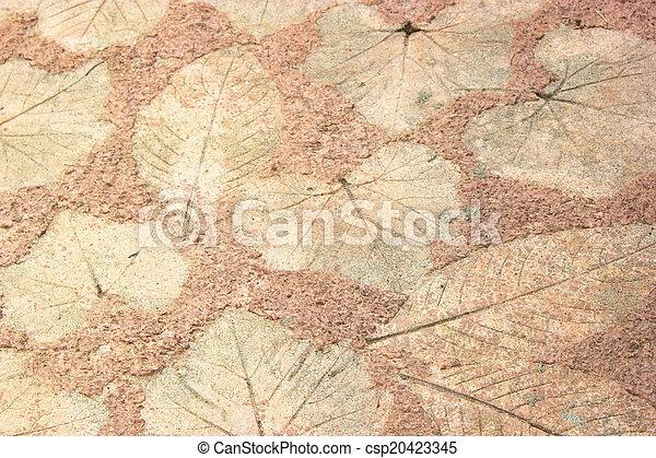 marks of leaf - csp20423345