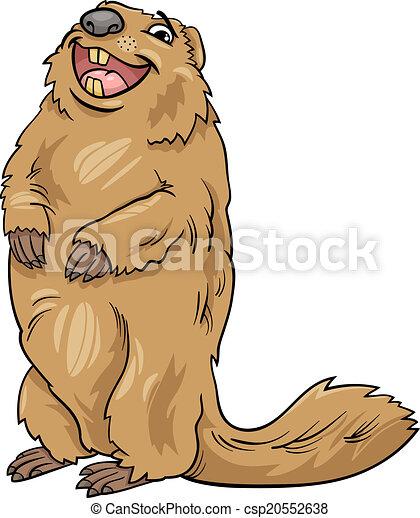 marmot animal cartoon illustration - csp20552638