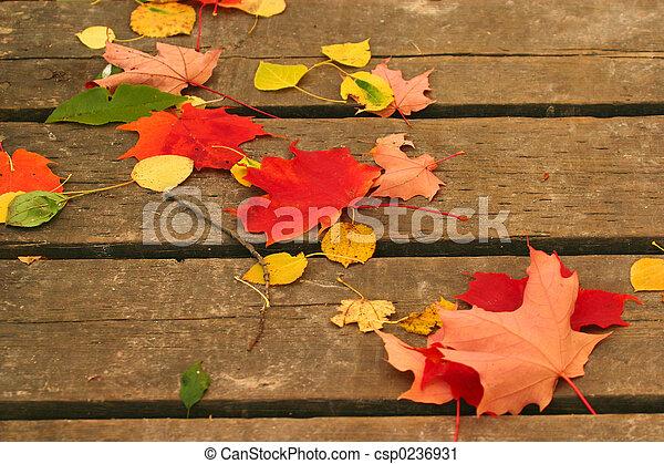 marqué, automne - csp0236931