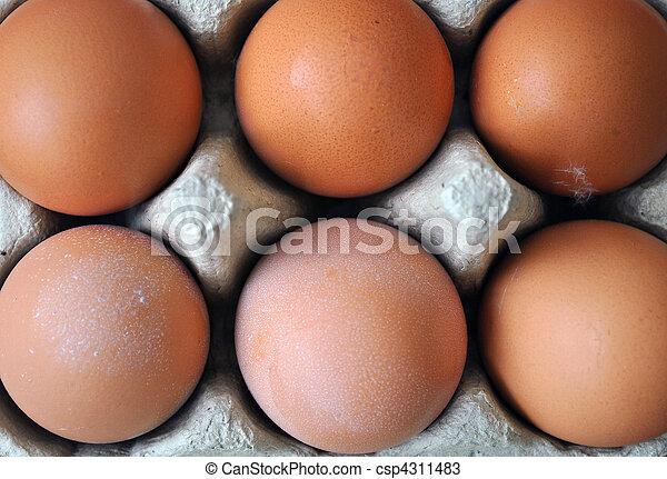 marrom, ovos, seis - csp4311483
