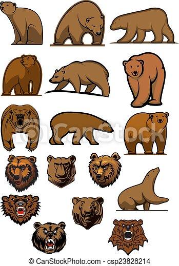 marrom urso pardo caráteres marrom diferente cabeças ursos