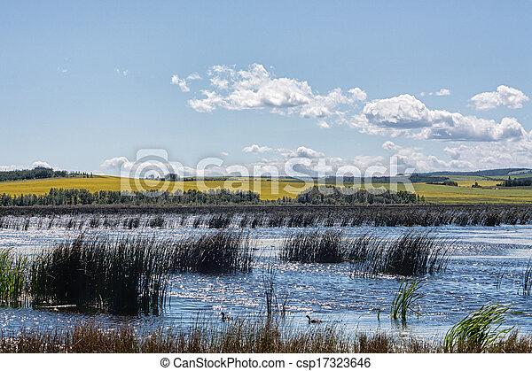 Marsh in the Alberta Prairies - csp17323646
