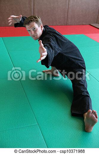 Martial arts - csp10371988
