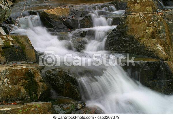 Maryland Stream - csp0207379