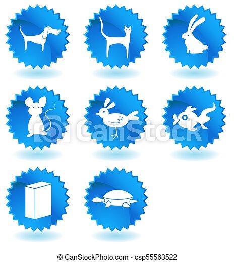 Botones de animales de tienda de mascotas - csp55563522