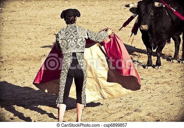 Matador and bull in bullfight. Madrid, Spain.  - csp6899857