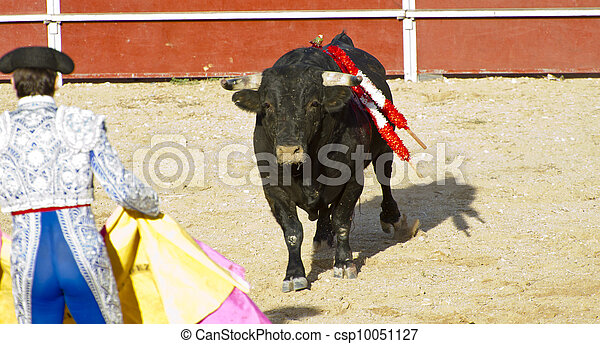 Matador and bull in bullfight. Madrid, Spain.  - csp10051127