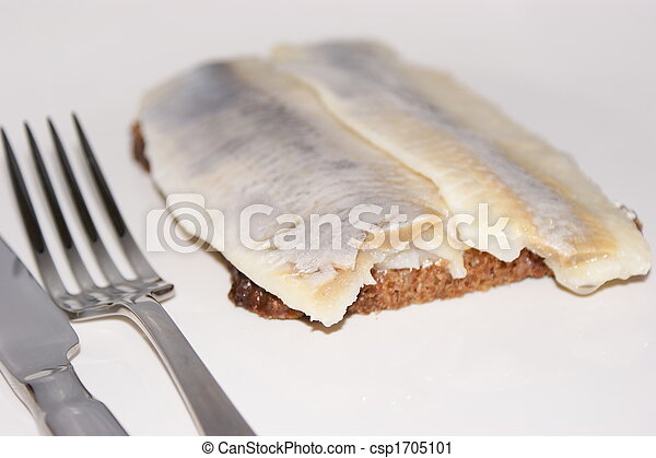 matie, a young herring on a slice bread - csp1705101