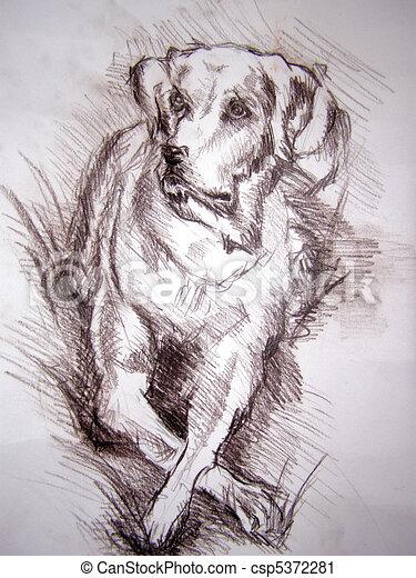 Matita cane disegno for Teschi da disegnare