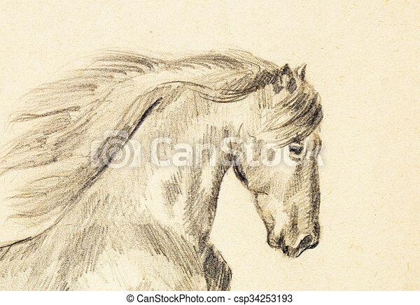 Matita disegnare vecchio carta cavallo mano draw for Cavallo disegno a matita