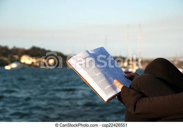 matthew, bijbel, -, boek, lezende  - csp22426551