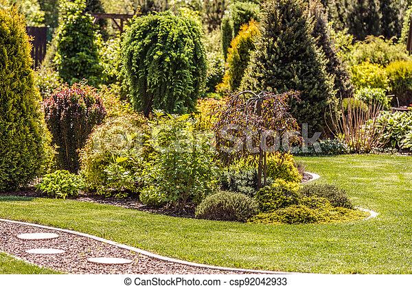 Mature Backyard Garden During Summer Day - csp92042933