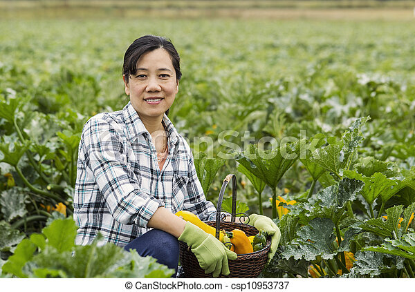 Mature women with basket of vegetables sitting in Field - csp10953737