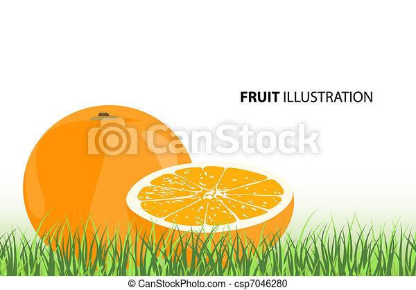 maturo, arance - csp7046280