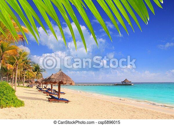 Mayan Riviera beach palm trees sunroof Caribbean - csp5896015