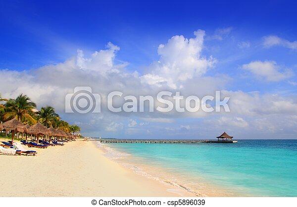 Mayan Riviera beach palm trees sunroof Caribbean - csp5896039