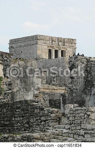 Mayan Tulum Ruins - csp11651834