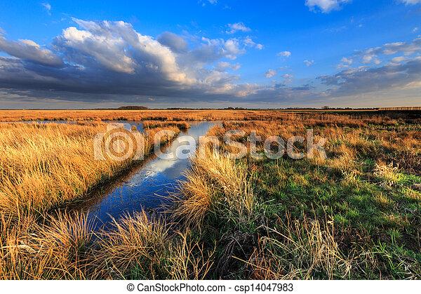 Meadow landscape with beautiful cloudscape - csp14047983