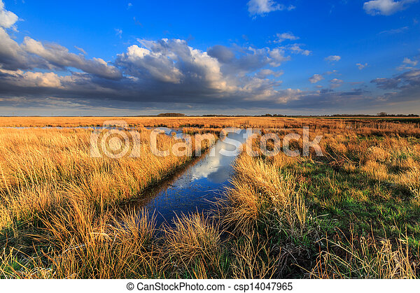 Meadow landscape with beautiful cloudscape - csp14047965