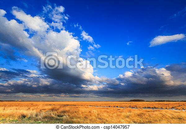 Meadow landscape with beautiful cloudscape - csp14047957