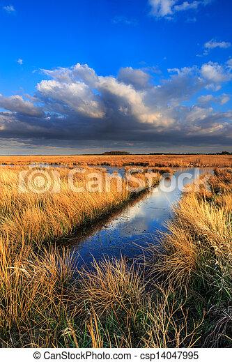 Meadow landscape with beautiful cloudscape - csp14047995