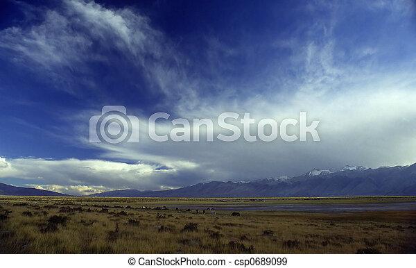 meadow - csp0689099