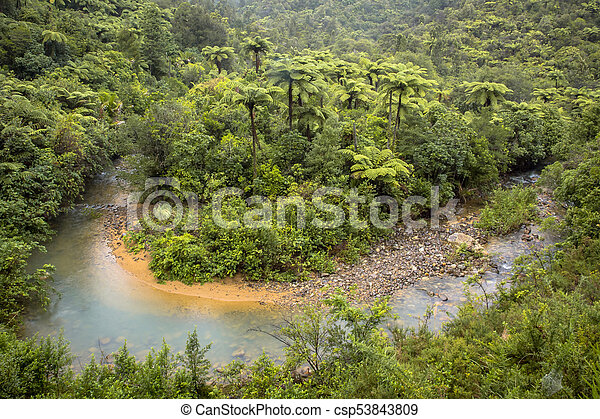 Meandering river through Forested Hills of New Zealand - csp53843809