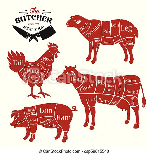 meat cuts diagrams for butcher shop animal silhouette vector illustration beef cuts illustration cow meat cuts diagram #12