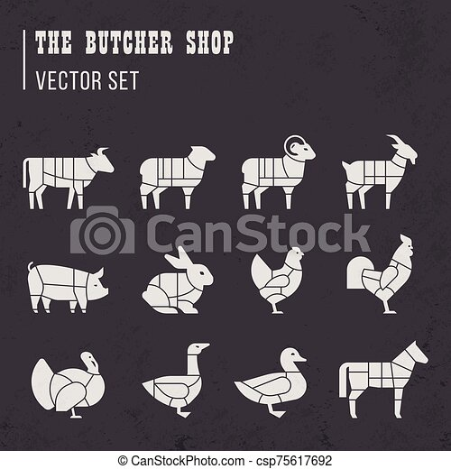 Meat cuts set. Diagrams for butcher shop. Scheme of chicken, beef, pork, etc. - csp75617692