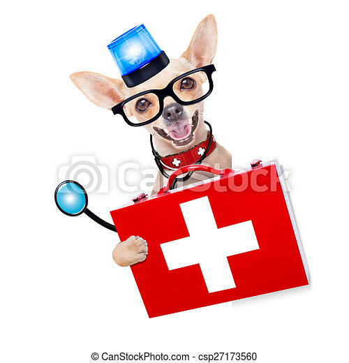 medical emergency doctor dog - csp27173560