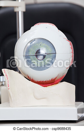 Medical Eye Model - csp9688435
