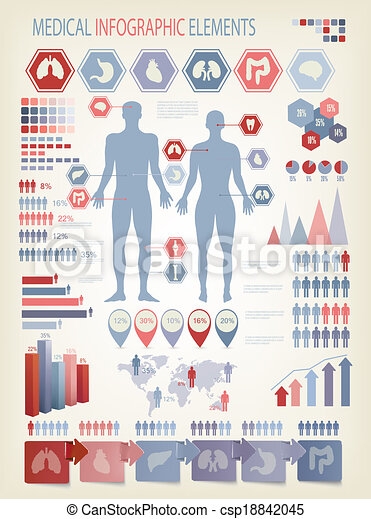 Medical infographics elements. Human body with internal organs. Vector. - csp18842045