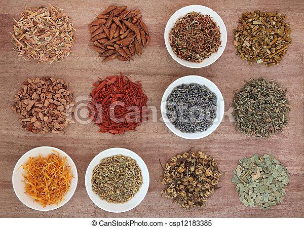 Medicinal and Magical Herbs - csp12183385