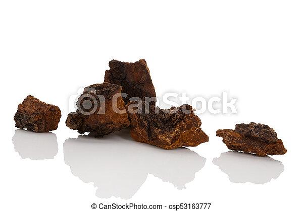 Medicinal chaga mushroom pieces - csp53163777